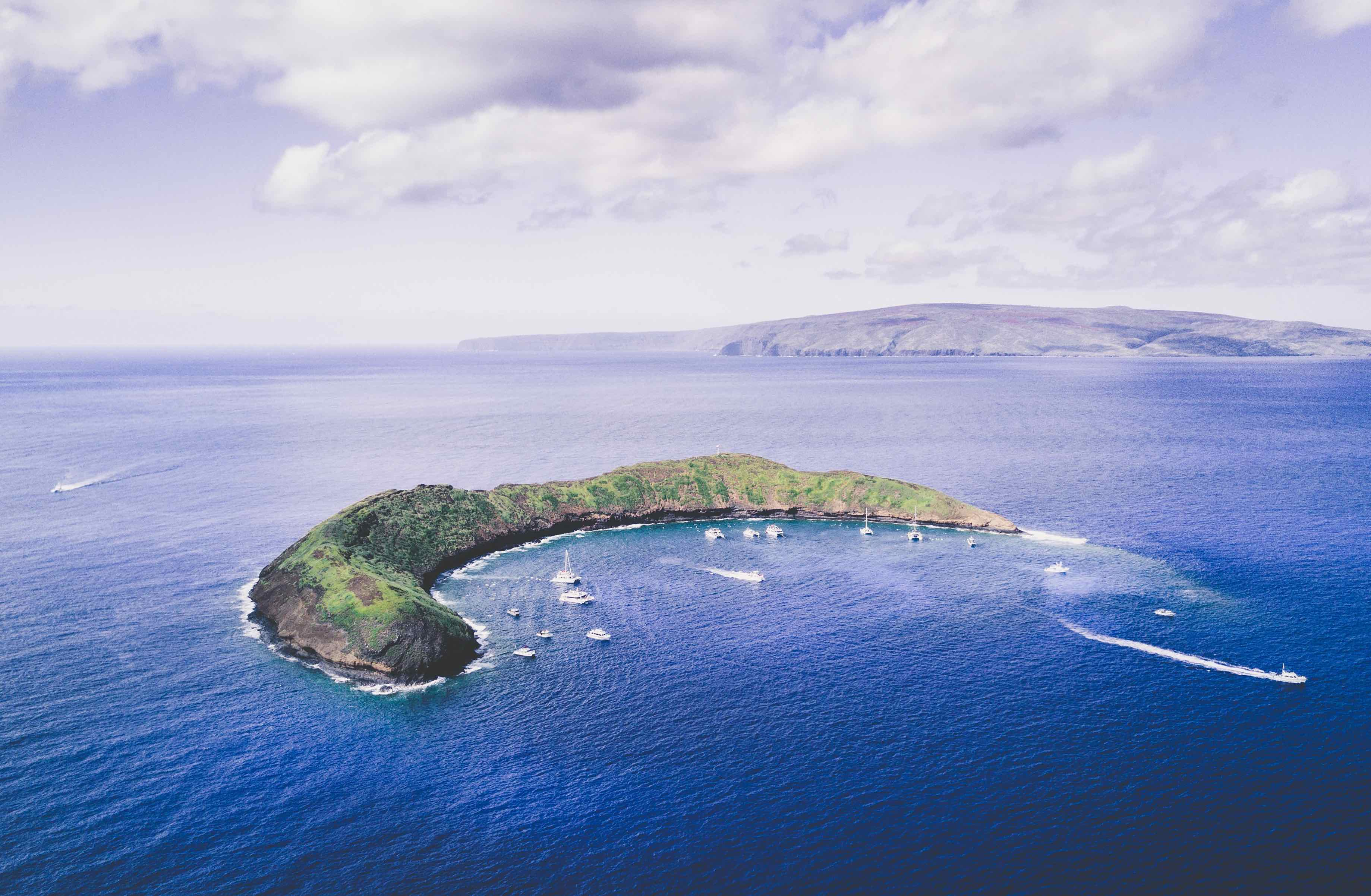 Conditions at Molokini Crater Improve During Coronavirus Pandemic